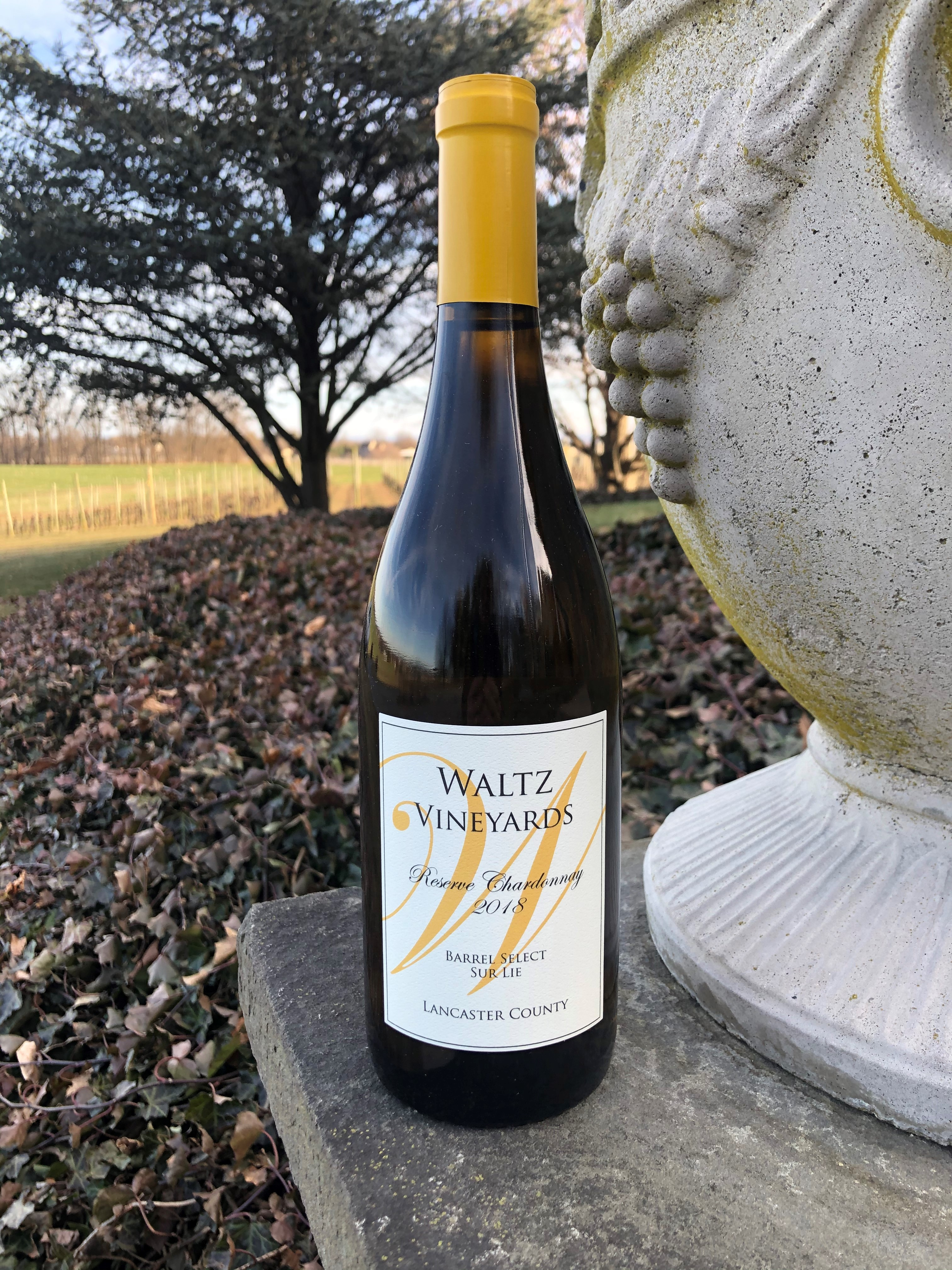 Product Image for Reserve Chardonnay 2018